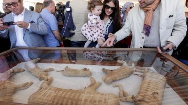 مصر تعرض للجمهور مومياوات لحيوانات عُثر عليها العام الماضي