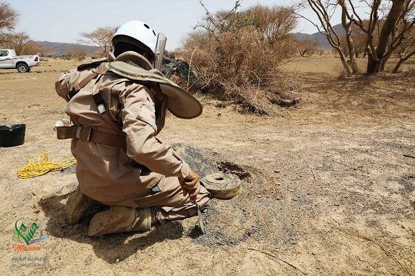 """""""مسام"""": تفجير وإتلاف 1600 لغم زرعتها ميليشيا الحوثي في بيحان شبوة"""