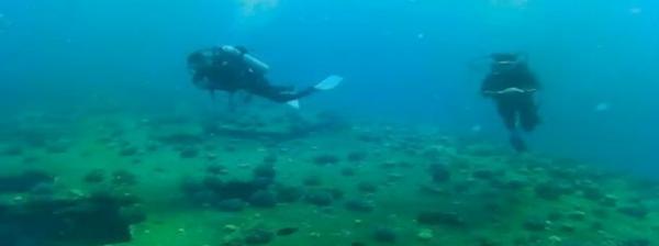 أوّل مزار سياحي مصري لمعدات عسكرية تحت مياه البحر الأحمر