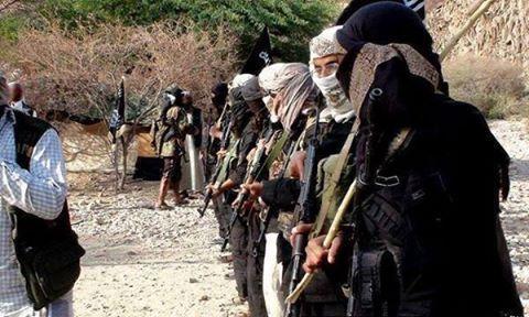 كبير محللي &#34جيمس تاون&#34 الامريكية: القاعدة المستفيد الرئيس من حرب السعودية على اليمن