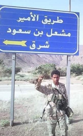"""توماس دبليو ليبمان: مملكة في """"فخ"""" اليمن!"""