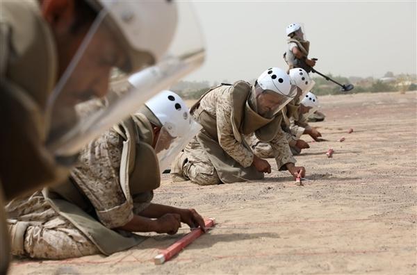 """""""مسام"""" يواصل نزع """"فخاخ الموت"""" الحوثية"""
