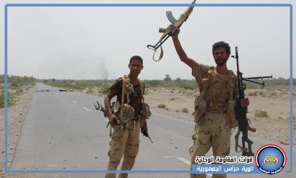 الحديدة: القوات المشتركة تؤمّن مزارع النخيل بمديرية بيت الفقيه