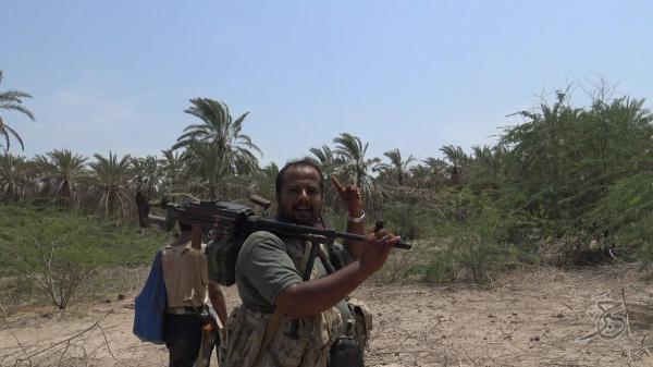القوات المشتركة تحرر مزارع غرب زبيد وشرق التحيتا كانت مركزاً حوثياً للقصف