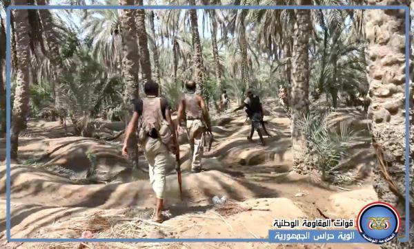 فيديو- المقاومة المشتركة تواصل تمشيط مزارع النخيل في بيت الفقيه وتغنم أسلحة تابعة للمليشيا