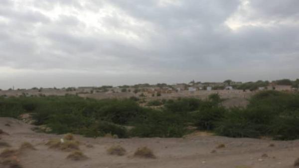 مليشيا الحوثي تواصل قصف المناطق السكنية في الحديدة