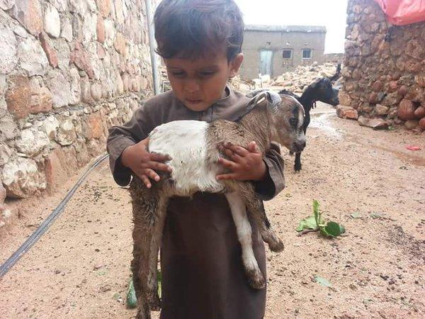 #اليمن .. جزيرة #سقطرى .. الاعصار #تشابالا